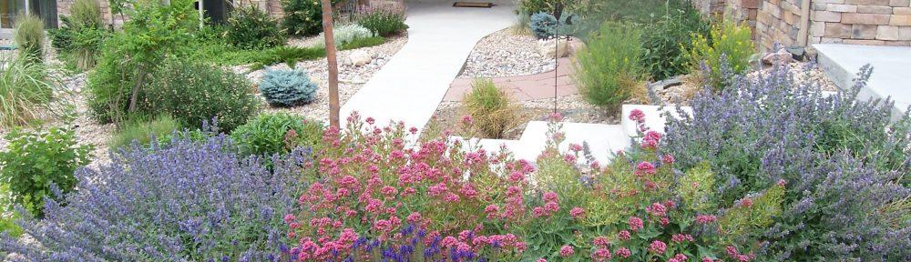 Denver Colorado Landscaping Service